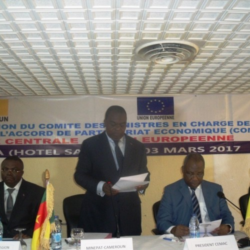 CEMAC: the European Union seeks to convince member countries