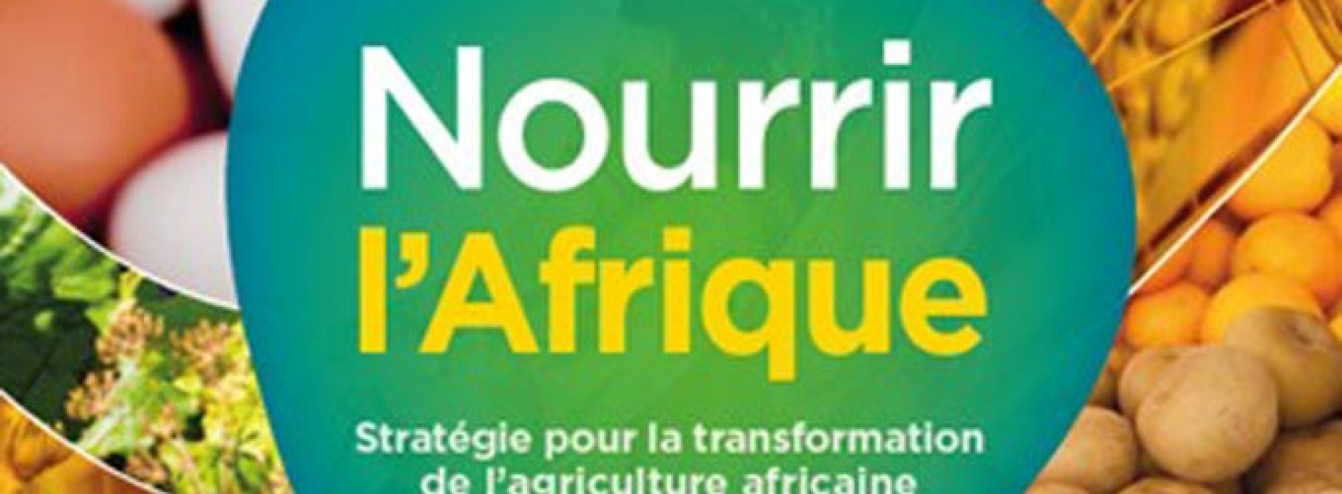 Agribusiness: New technologies and innovative financing, new opportunities