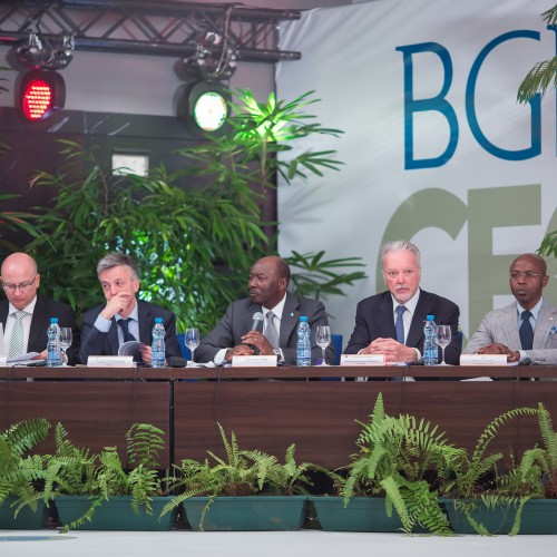 BGFIBank: An African bank for the world