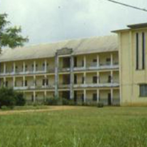 Cameroon: Cosaco promises a scientific and technological revolution