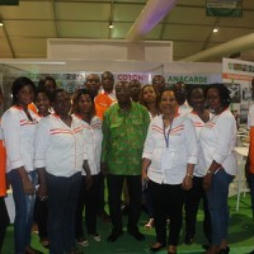 Côte d'Ivoire – Cotton and Anacardia Council meets in Grand-Bassam