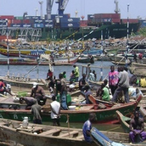 Ghana «Fish farming is the next gold in Ghana»